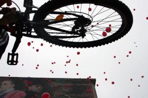 verde pentru biciclete roz 4