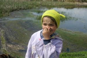 poluare obad zi 1 p