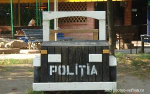 politia lemn