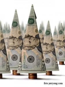 dolari  teapa