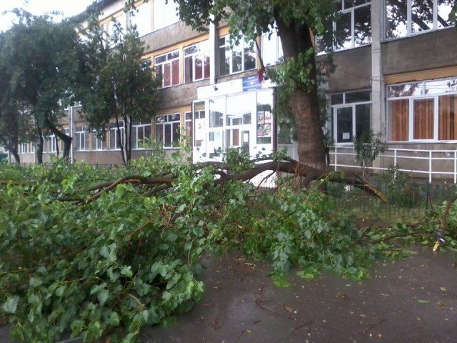 copac.gen2