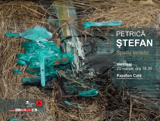 afis Petrica STEFAN
