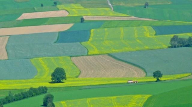 terenuri_agricole 2
