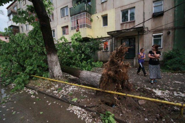 copac smuls furtuna