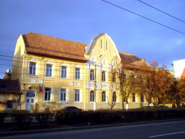 scoala generala fabric
