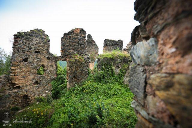 Castelul-din-Carpati-sau-Cetatea-Colt_13-800x533