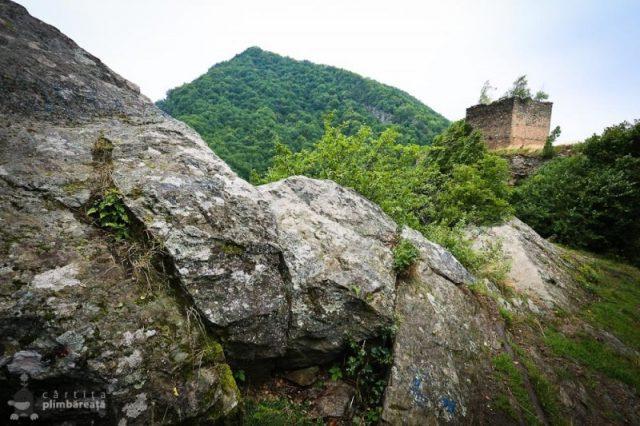 Castelul-din-Carpati-sau-Cetatea-Colt_33-800x533