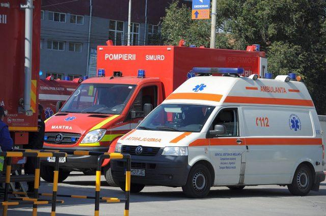 exercitiu urgenta pompieri ambulanta caini (10)