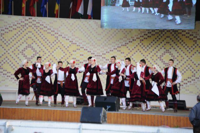 festival rozelor (14)