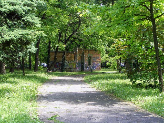 parcul botanic 1