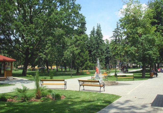 parcul doina