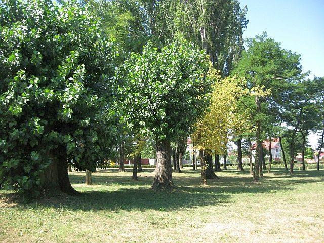 Parc Lidia biotowns_ro