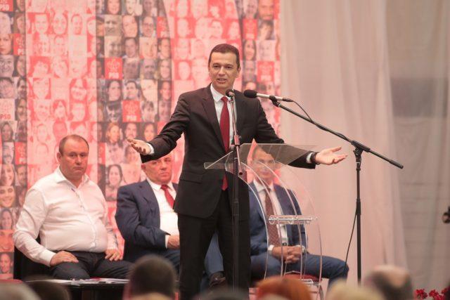 alegeri psd timis grindeanu (7)