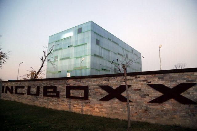 incuboxx 02