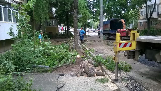 strada astrilor defrisare copaci taiati 12 mai 2016 (4)