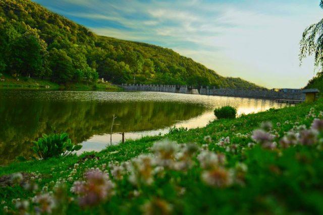 3. lac oravita