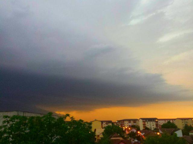 nori furtuna (4)