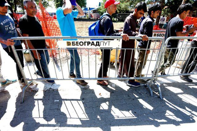 migrantii din belgrad