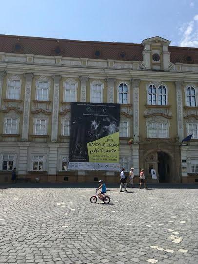 muzeu arta tm