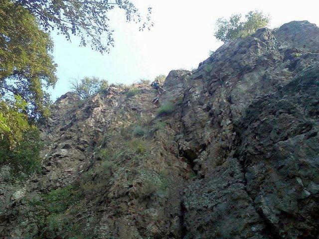 operatiune salvare dealul cetatii hunedoara (1)