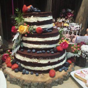 tort pe buturuga