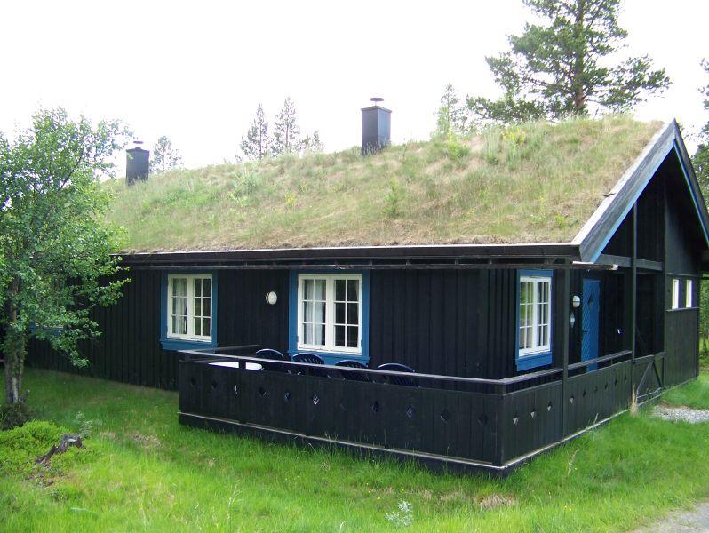 casa acoperita cu pamant