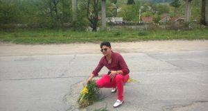 flori plantate sosea