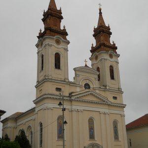 Catedrala din Arad pictată de Ioan Zaicu