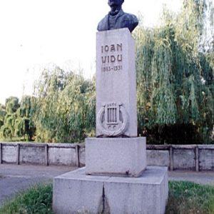 Ioan Vidu