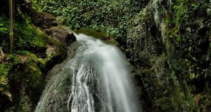 cascada prigor