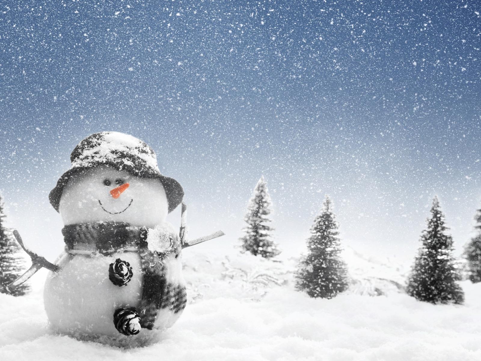 Imagini pentru ninge
