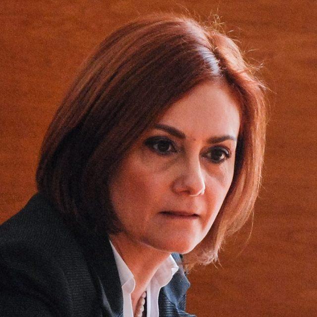 judecator stoicescu
