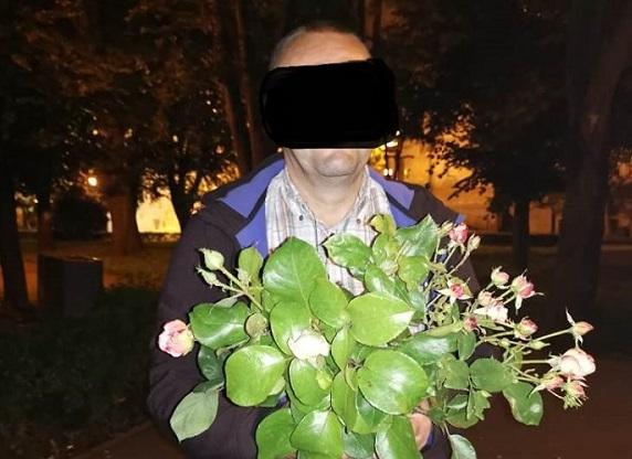 furt trandafiri