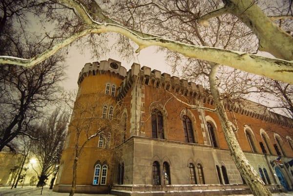 castelul-huniade-muzeul-banatului.jpg